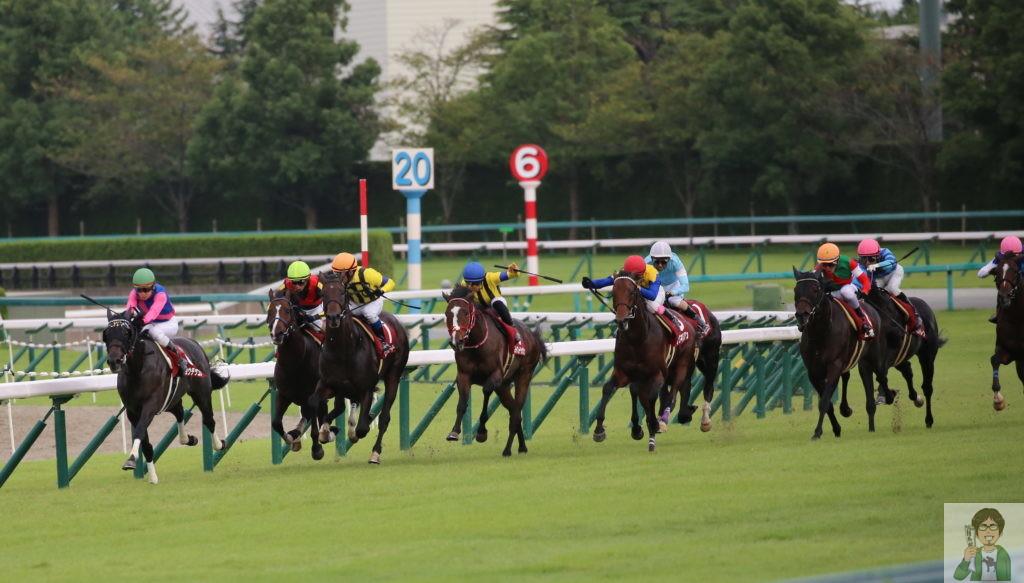 大阪杯2020を予想しよう!荒れるならあの馬が激走しそう!