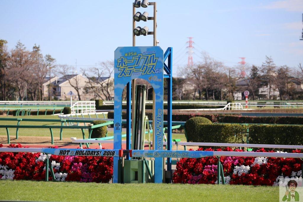中山競馬場ゴール板