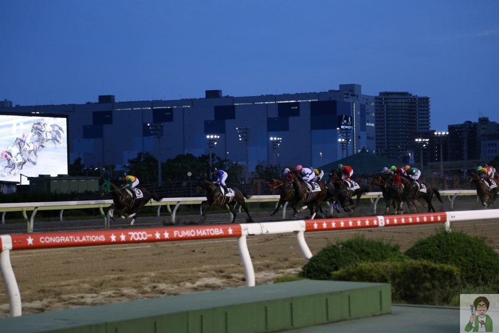 夜のレース